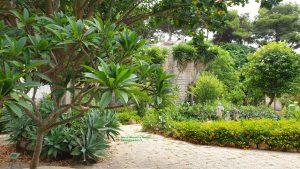 Giardino dell'impossibile, Favignana